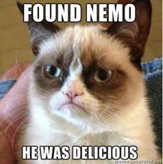 Grumpy Cat Eats Nemo