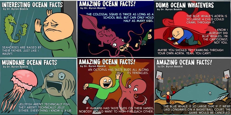 Interesting Ocean Facts Meme