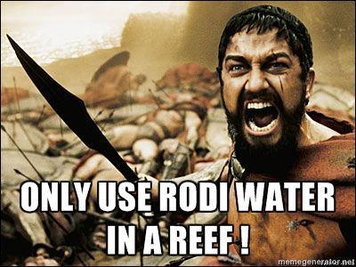 300 RODI Water