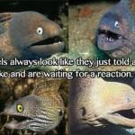 Eels Always Joking