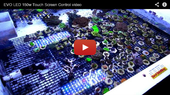 Evolution LED Touch Screen Demo
