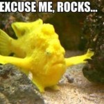 Excuse Me Rocks Frogfish