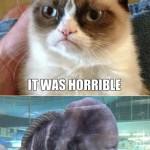 Grumpy Cat Meets Grumpy Fish