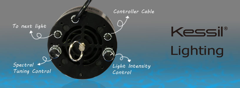 Kessil A360 Controls