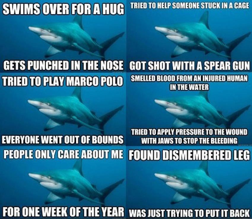 Misunderstood Sharks
