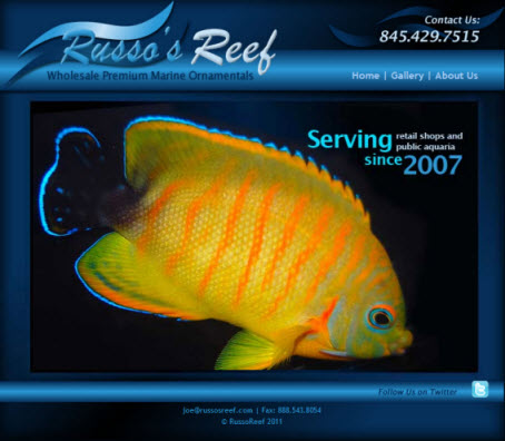 Russo's Reef