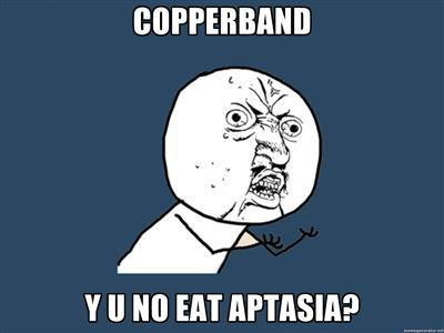 Y U NO Copperband