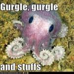 Octopus Gurgle Gurgle