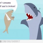 Shark and Broken Seal