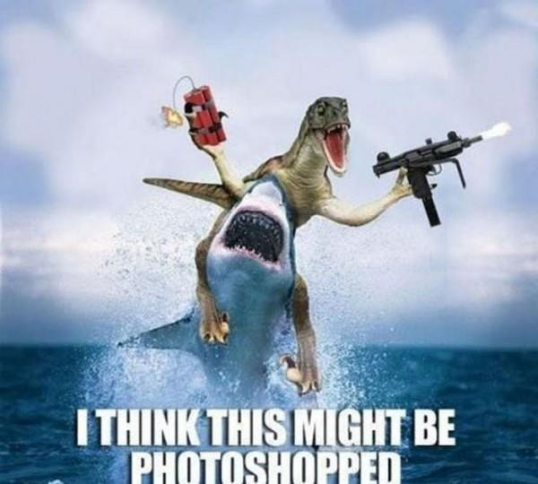 Shark and Raptor Photoshop