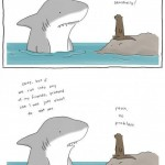 Shark and Seal Friends