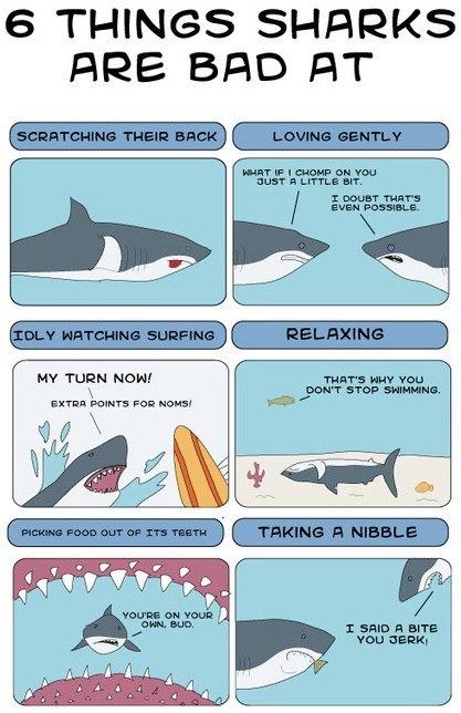 Things Sharks Are Bad At