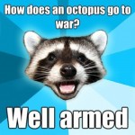 Lame Pun Raccoon Well Armed Octopus