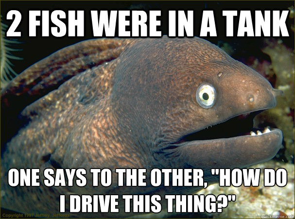 Bad Joke Eel Fish Drive Tank