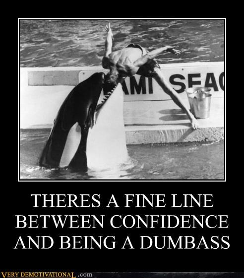 Killer Whale Demotivational