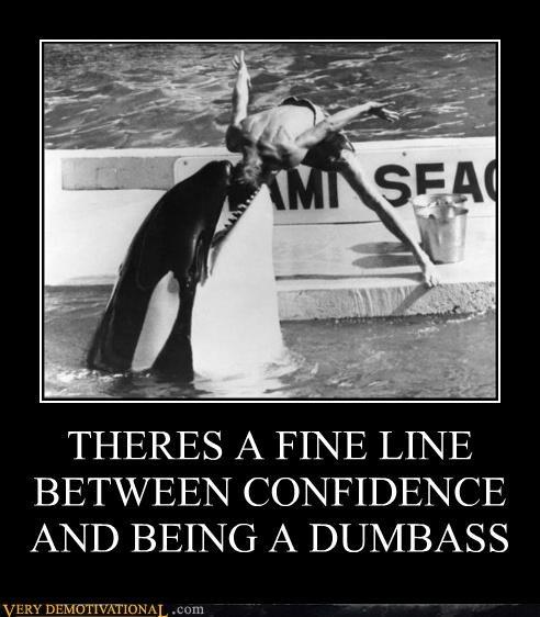 Killer Whale Demotivational