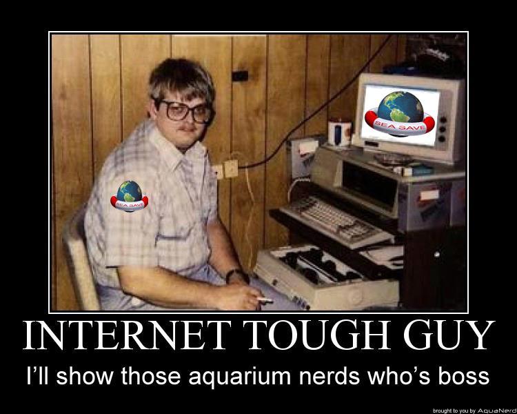Sea Save Internet Tough Guy