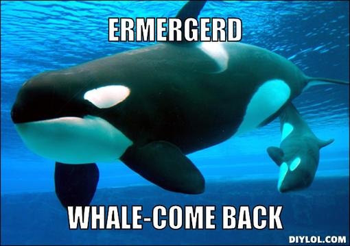 Whale-come Back