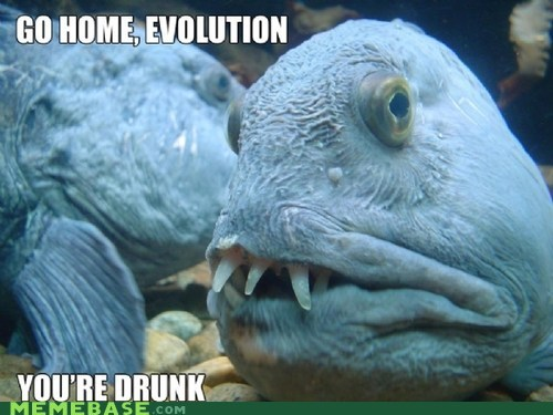 Drunk Evolution