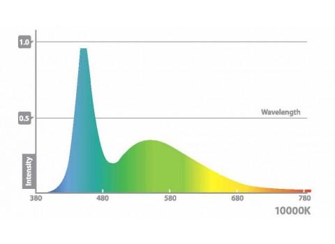 Ecoxotic Cannon Flood LED 10000K Spectrum