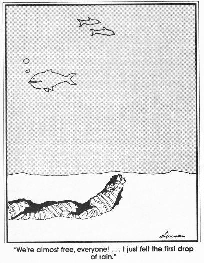 Gary Larson Escaped Inmates Underwater