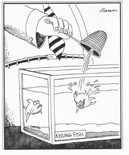 Gary Larson Ugly Kissing Fish
