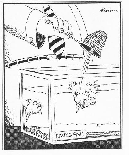 Gary Larson Ugly Kissing Fish