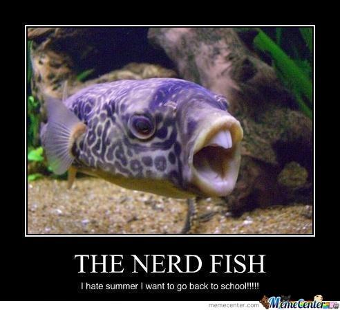 Nerd Fish