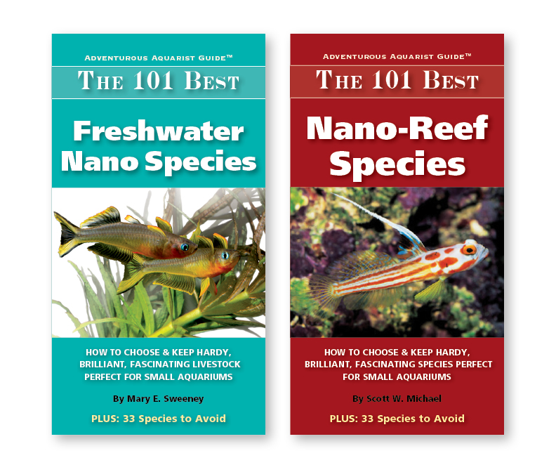 Two 101 NANO Books