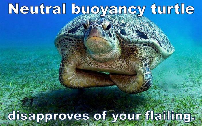 Neutral Buoyancy Turtle
