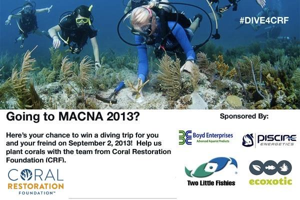 MACNA 2013 CRF Dive