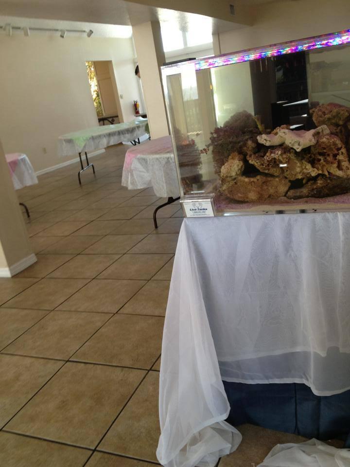 Reef Aquarium Wedding Cake Angled