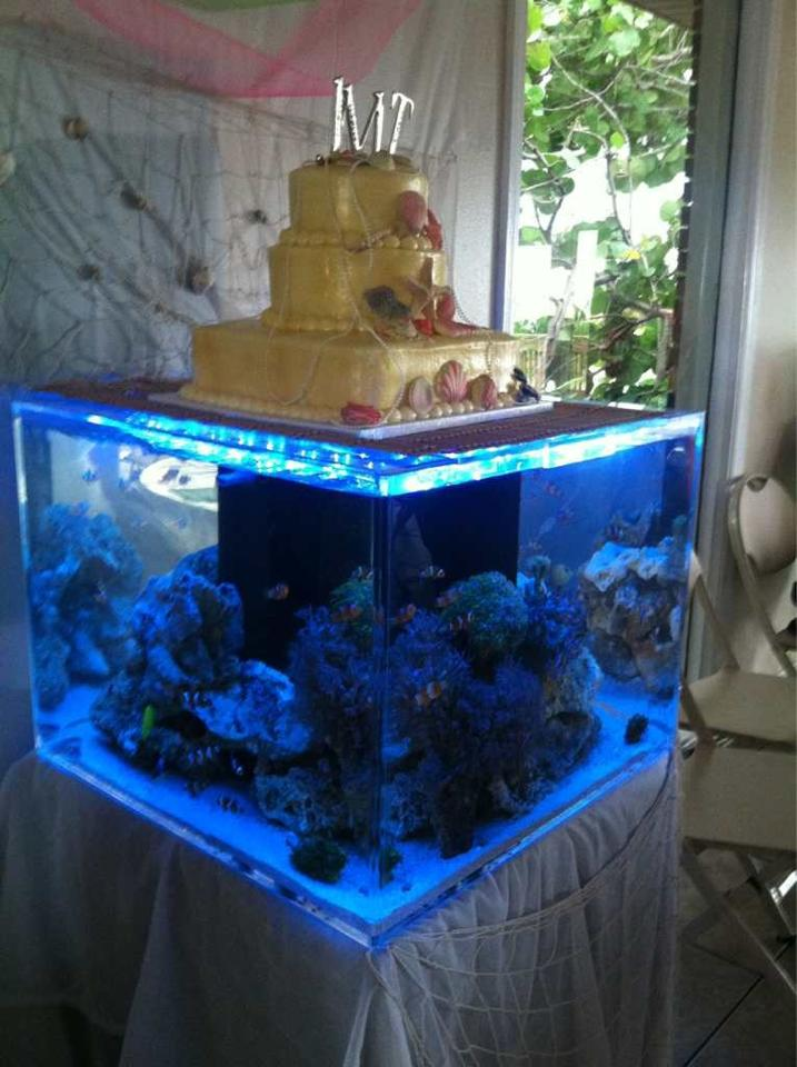 Reef Aquarium Wedding Cake