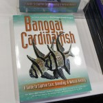 Banggai Rescue Project