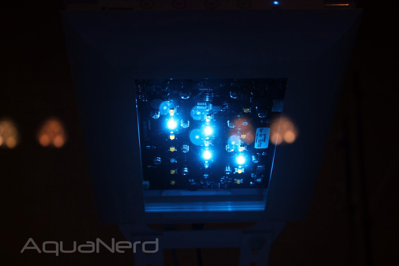 Giesemann Teszla Blue LEDs