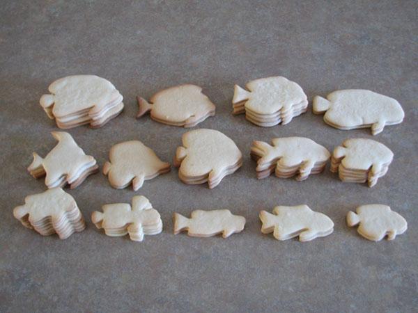 Jason Langer Reef Fish Cookie Blanks