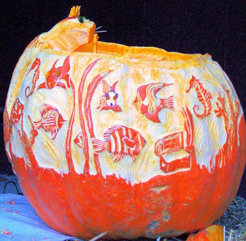 Aquarium Pumpkin