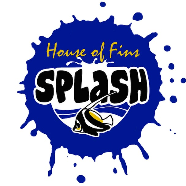 House of Fins SPLASH