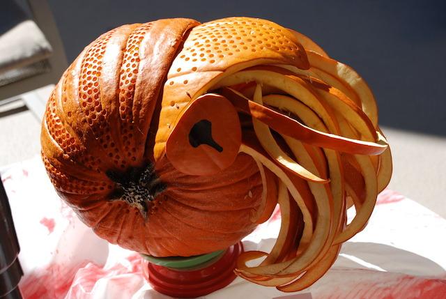 Nautilus Pumpkin