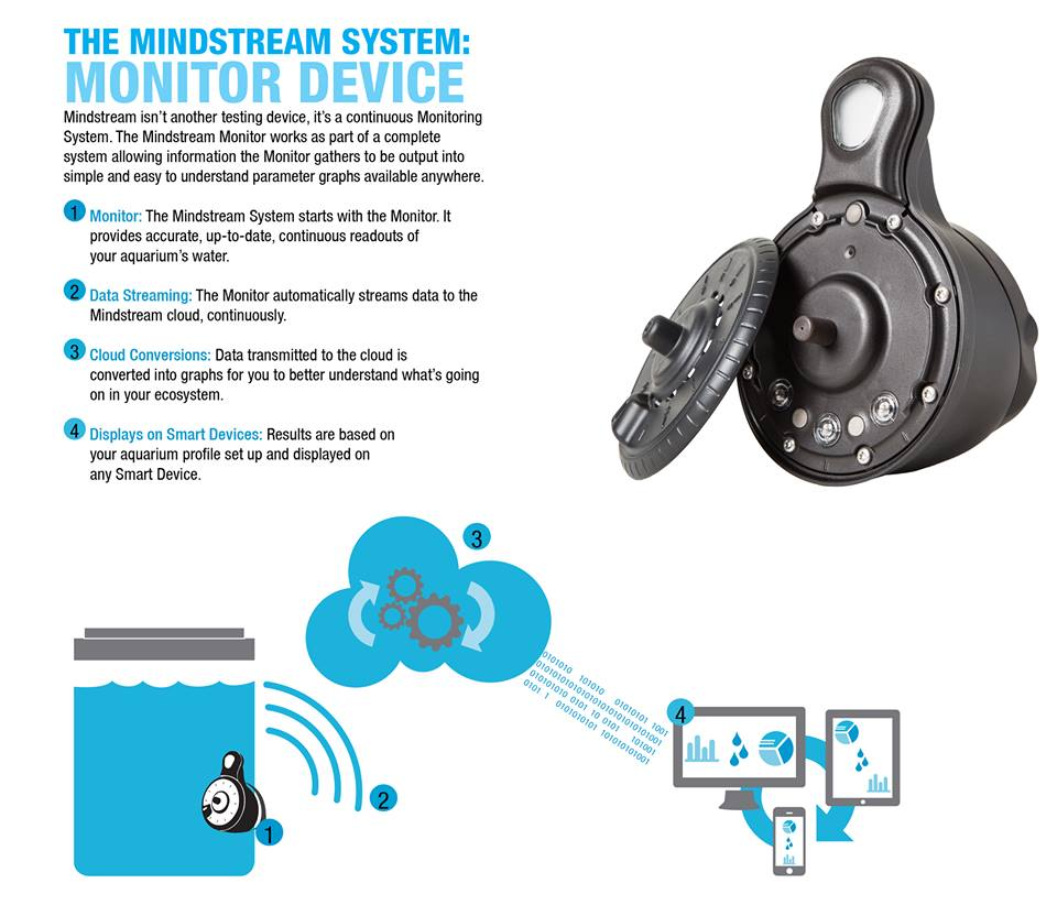 Mindstream System Monitor Device