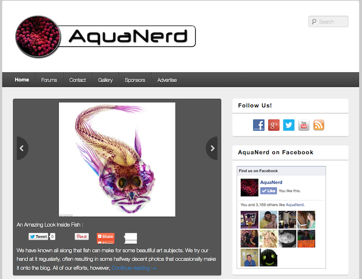 AquaNerd Blog New Look