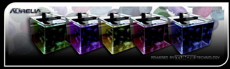 Aurelia Aquariums Color