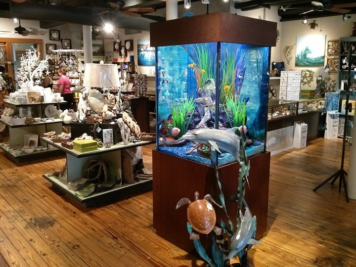 Fish Gallery Aquarium Display