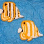 Butterflyfish Reef Cookies