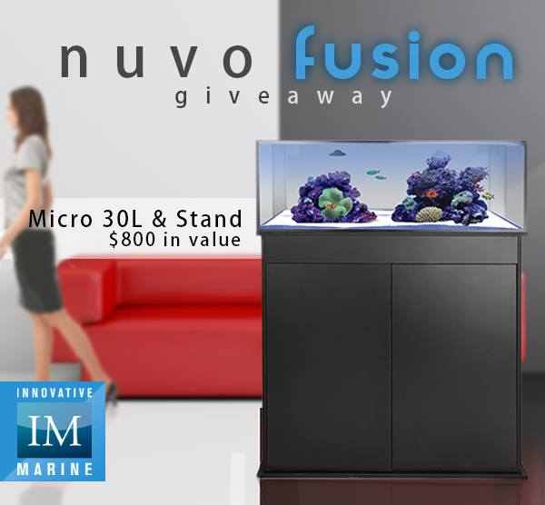 Innovative Marine NUVO Fusion Giveaway