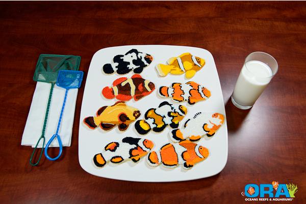 ORA Clownfish Cookies
