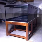 Reef Savvy Basement Build