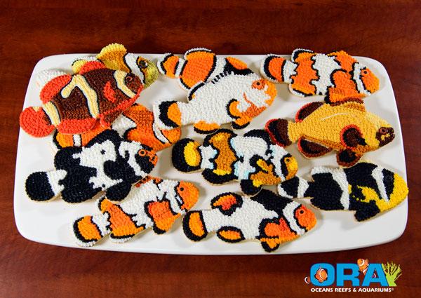 ORA Clownfish Cookie