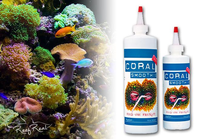 coralsmoothie