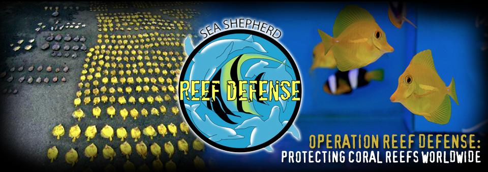 Sea Shepherd Operation Reef Defense